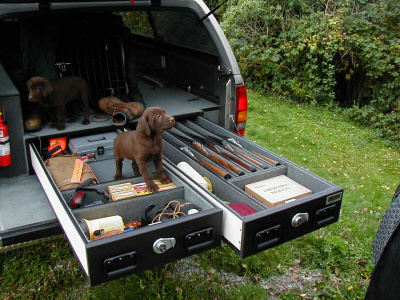 TruckVault With Chocolate Lab Hunting Dogs